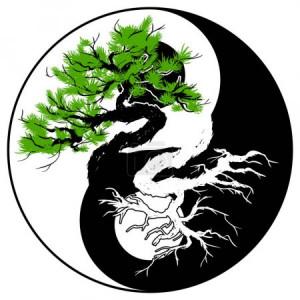 FotkyFoto_cerna-a-bila-bonsaje-strom-v-symbolu-jin-jang_230150524